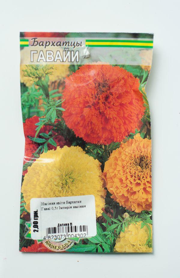 Уличные цветы каталог